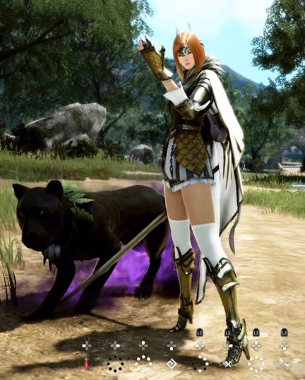 黒い砂漠PS4黒豹