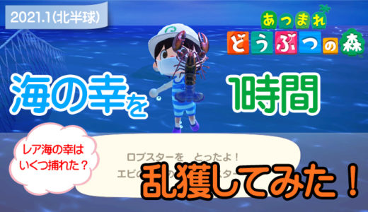 【あつ森】海の幸を1時間乱獲してみた!(1月北半球)