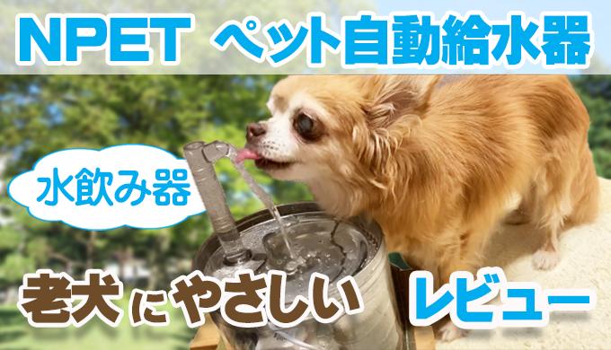 【NPET】ペット自動給水器レビューさむね
