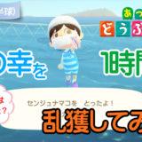【あつ森】海の幸を1時間乱獲してみた!(2月北半球) サムネ