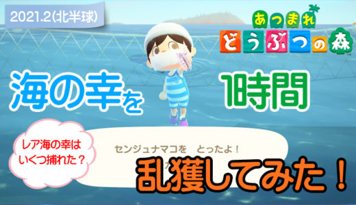【あつ森】海の幸を1時間乱獲してみた!(2月北半球)