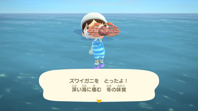 【あつ森】海の幸を1時間乱獲してみた!(2月北半球) ズワイガニゲット!