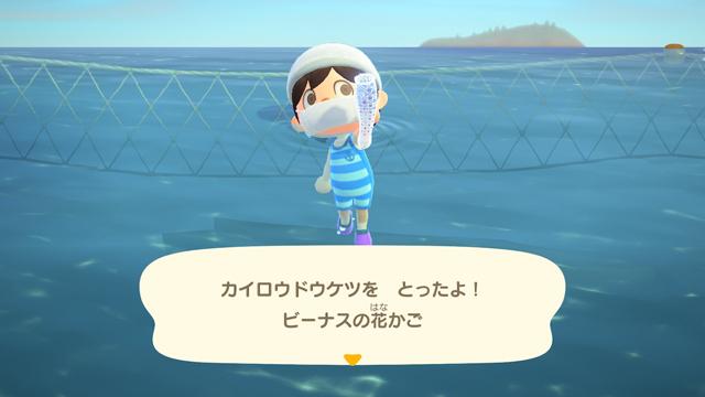 【あつ森】海の幸を1時間乱獲してみた!(2月北半球) カイロウトウゲツゲット!