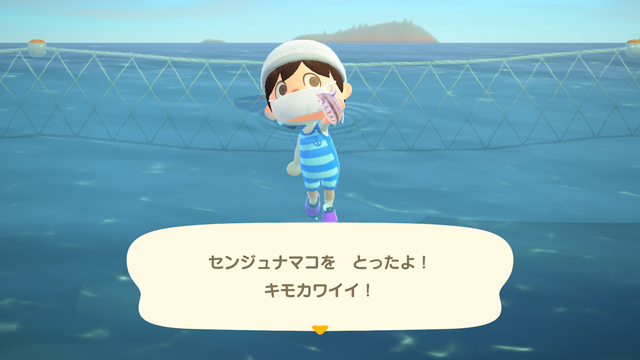 【あつ森】海の幸を1時間乱獲してみた!(2月北半球) センジュナマコゲット!
