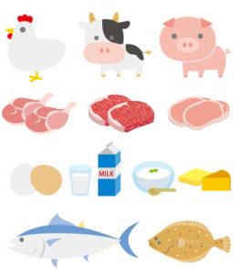 SOYJOY動物性たんぱく質