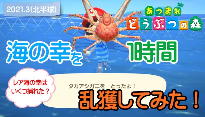 【あつ森】海の幸を1時間乱獲してみた!(3月北半球) サムネ