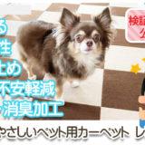 【BITTOP】老犬にやさしいペット用カーペット レビュー サムネイル