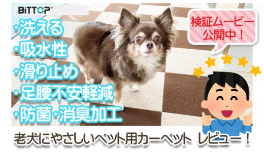 【BITTOP】老犬にやさしいペット用カーペット レビュー