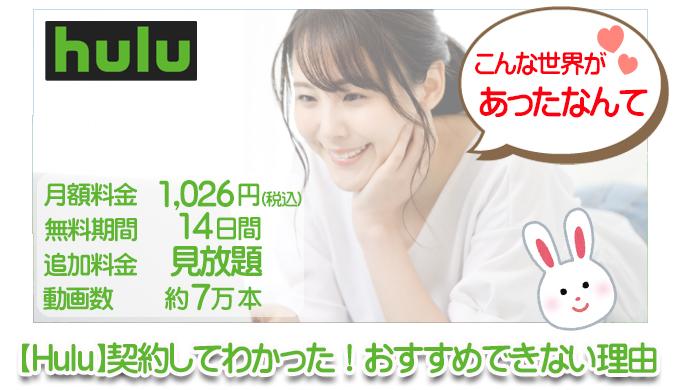 【Hulu】契約してわかった!おすすめできない理由 サムネイル